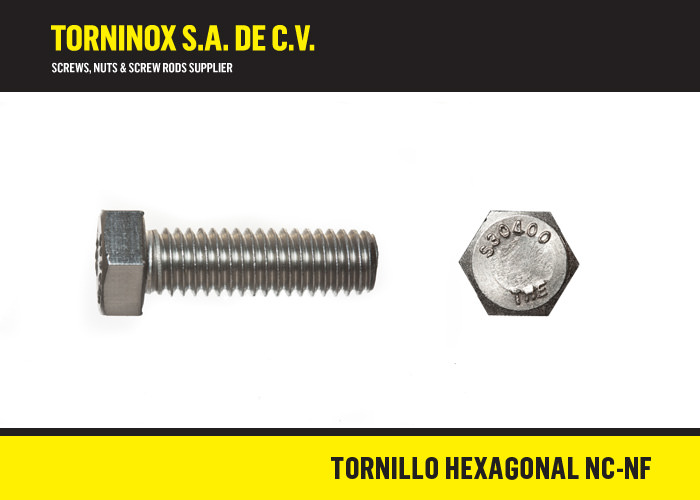 Tornillo Inoxidable